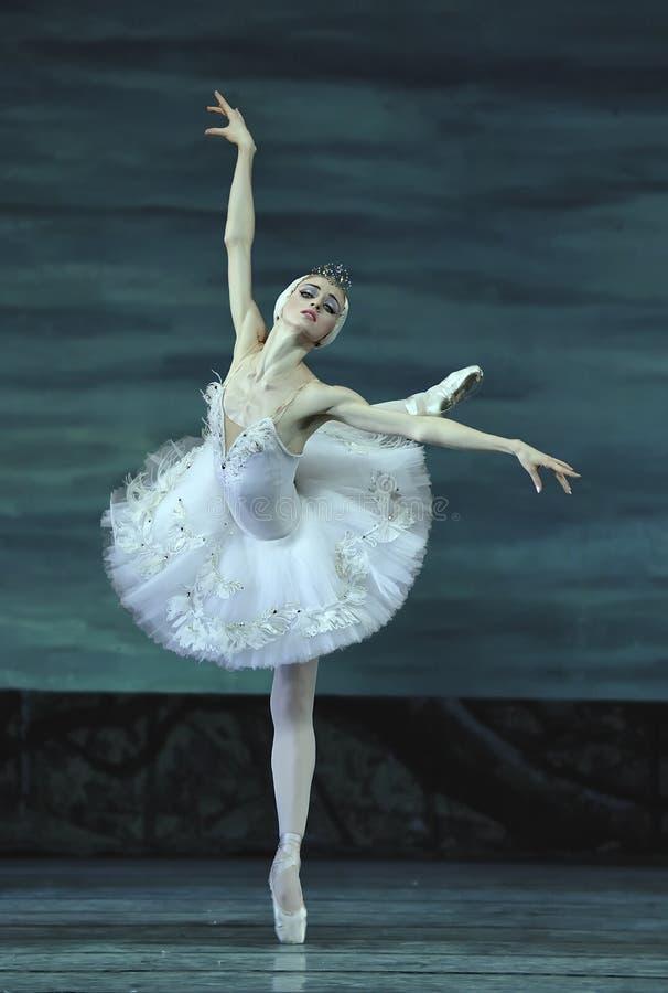 Het meerballet van de zwaan dat door Russisch koninklijk ballet wordt uitgevoerd royalty-vrije stock afbeelding