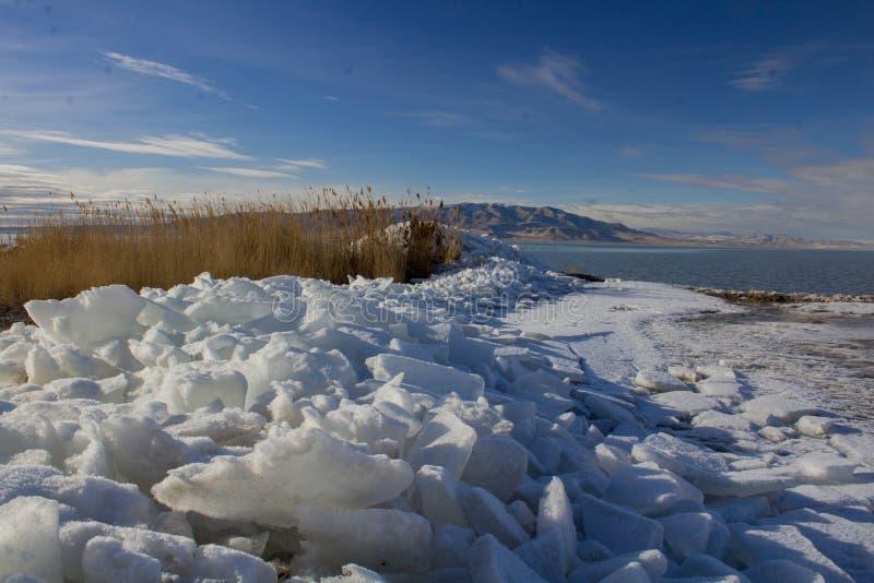 Het Meerijskappen van Utah in de winter stock fotografie