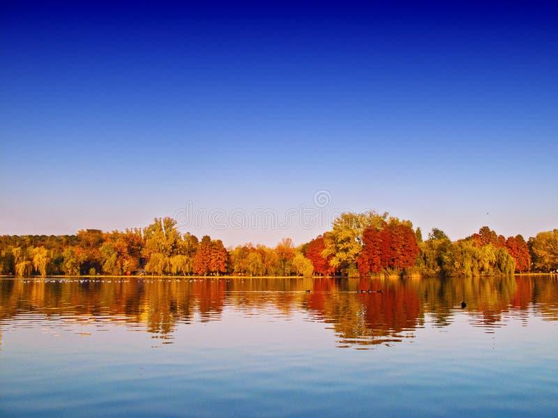 Het meerlandschap van de herfst stock foto's
