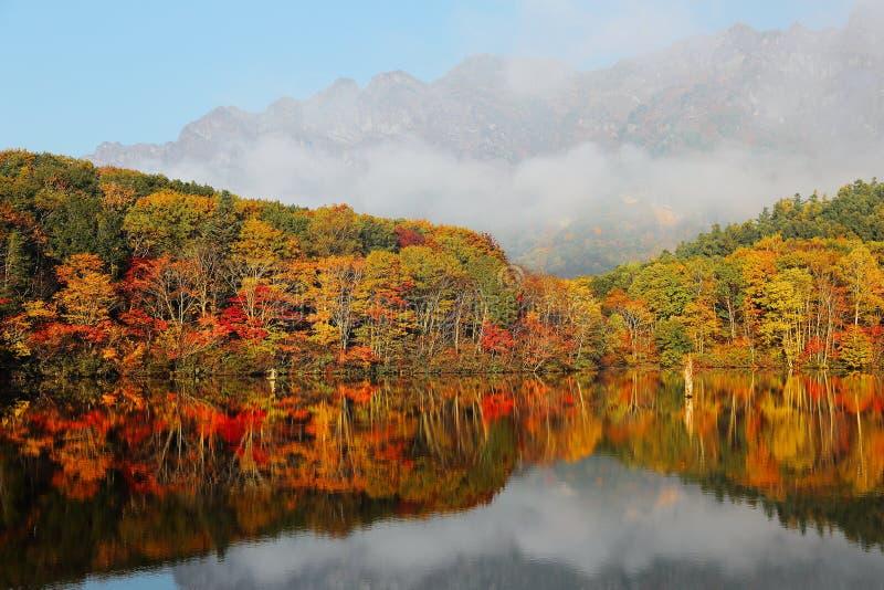 Het meerlandschap van de herfst Bossen van kleurrijk gebladerte die het vlotte water van Kagami Ike overdenken stock afbeeldingen