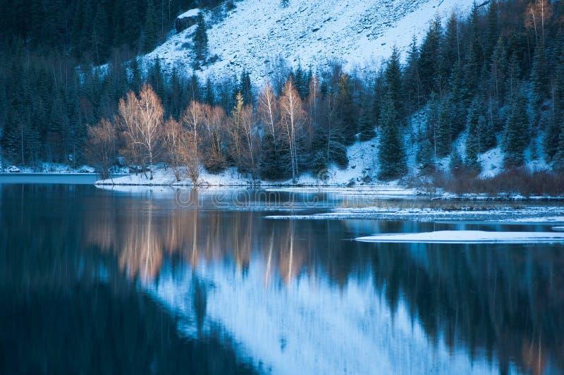 Het meerscène van de winter met mooie bezinning stock afbeeldingen