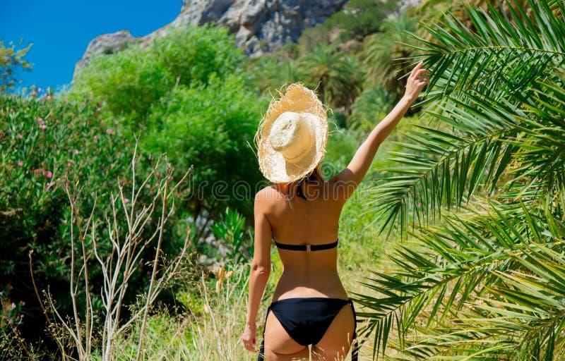 Het meisje in bikini en de hoed hebben rust in palmbos stock foto