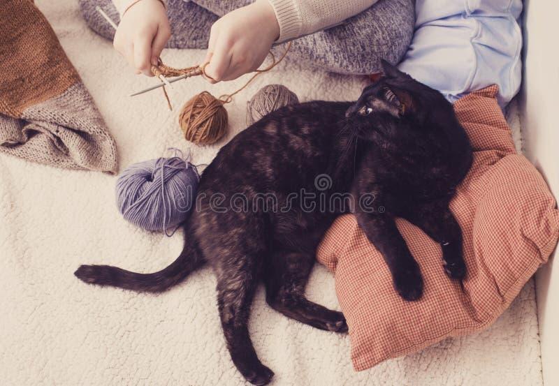 Het meisje breit en de zwarte kat ligt op hoofdkussen stock foto