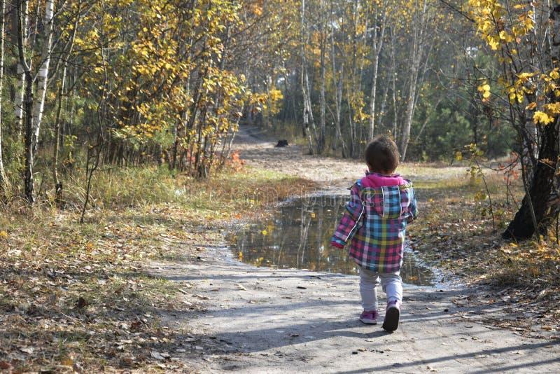 Het meisje in de herfstbos is op de weg dichtbij de vulklei stock afbeeldingen