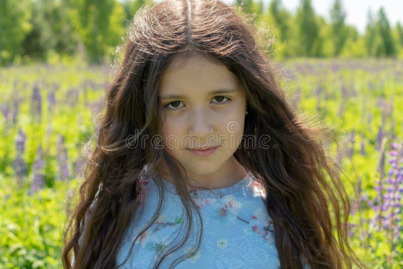 Het meisje in de purpere kleding glimlacht en bekijkt de camera tegen de achtergrond van het lupinegebied royalty-vrije stock afbeeldingen