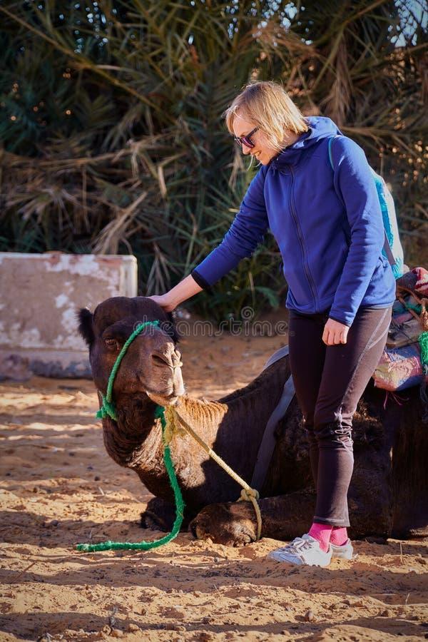 Het meisje die van de blondetoerist voor de reis op de kameel in woestijn voorbereidingen treffen stock afbeelding