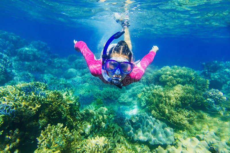 Het meisje duikt in een tropische overzees stock foto