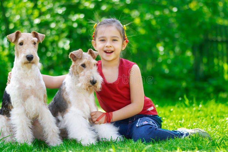 Het meisje en twee fox-terrieren royalty-vrije stock foto's