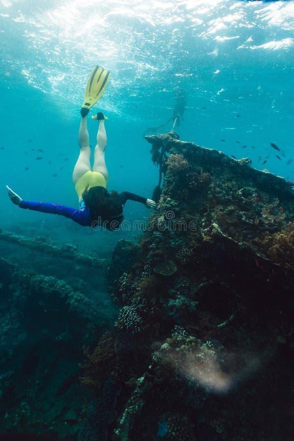 Het meisje freediver onderzoekt het oude gedaalde schip in de Caraïben stock foto's