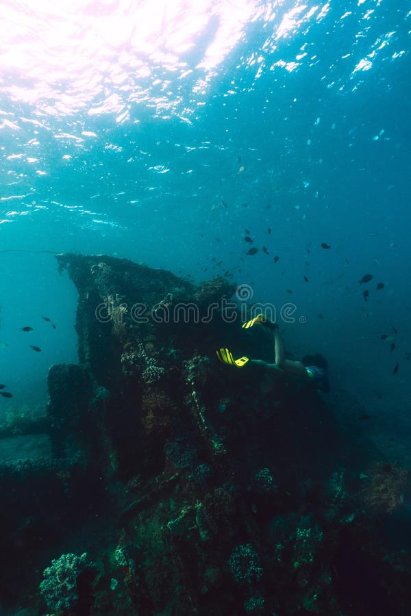 Het meisje freediver onderzoekt het oude schip in het Caraïbische overzees royalty-vrije stock fotografie