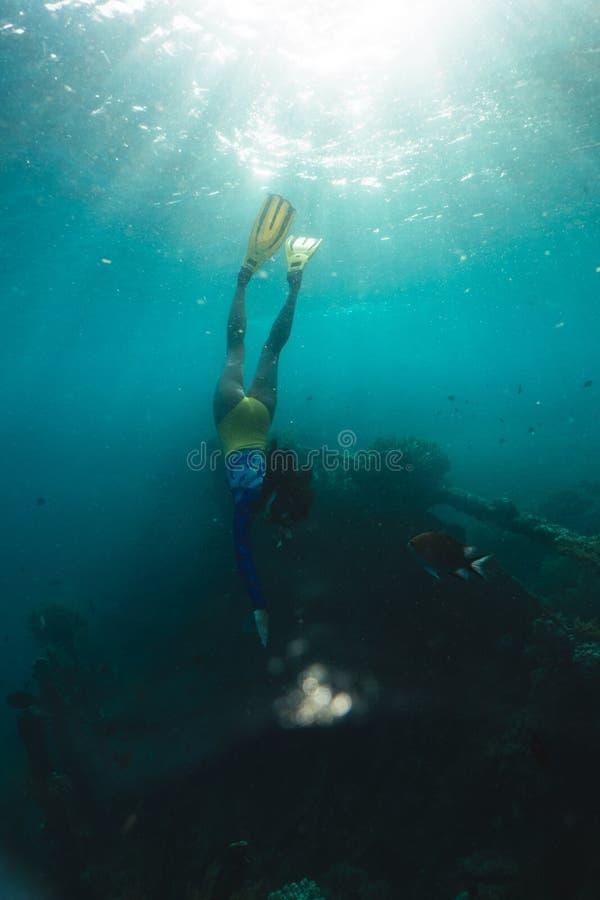 Het meisje freediver onderzoekt het oude schip in de Caraïben stock afbeeldingen