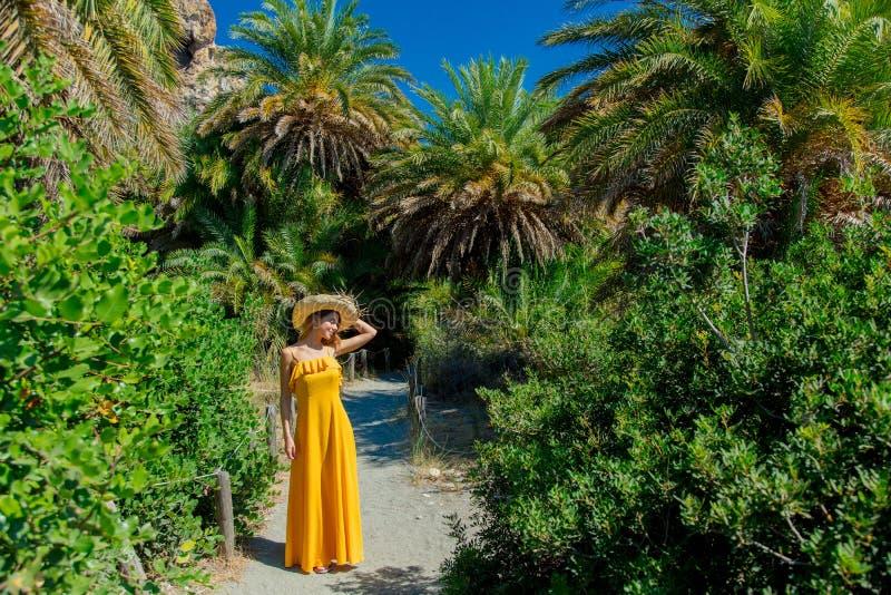 Het meisje heeft rust in palmbos stock fotografie