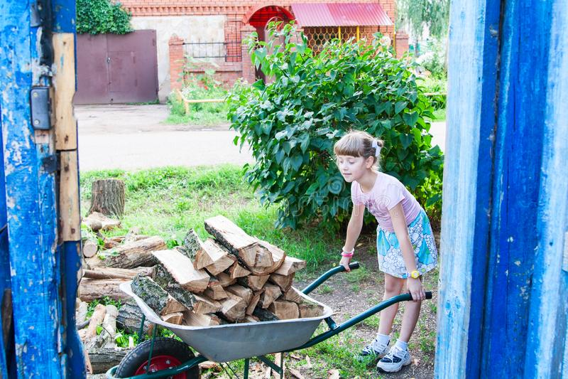 Het meisje helpt om het brandhout te dragen stock foto