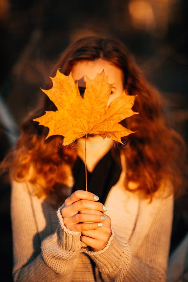 Het meisje houdt de herfstbladeren op de achtergrond van bos royalty-vrije stock fotografie