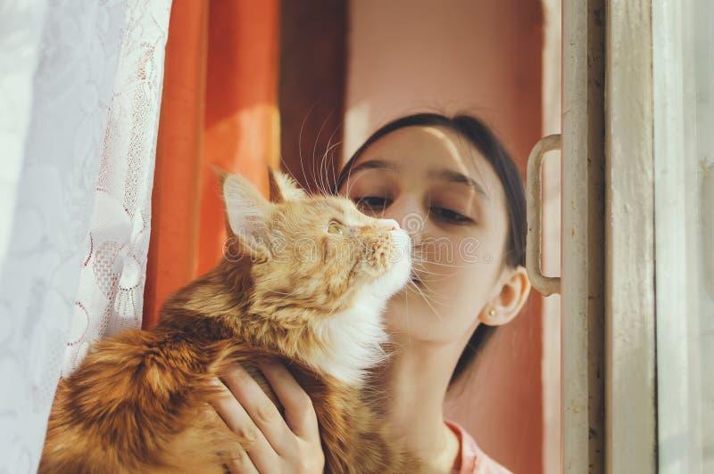Het meisje houdt een rode kat in haar wapens stock afbeeldingen