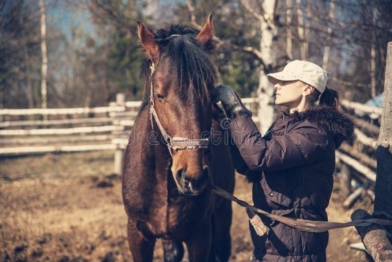 Het meisje kamt de manen van een paard stock foto's