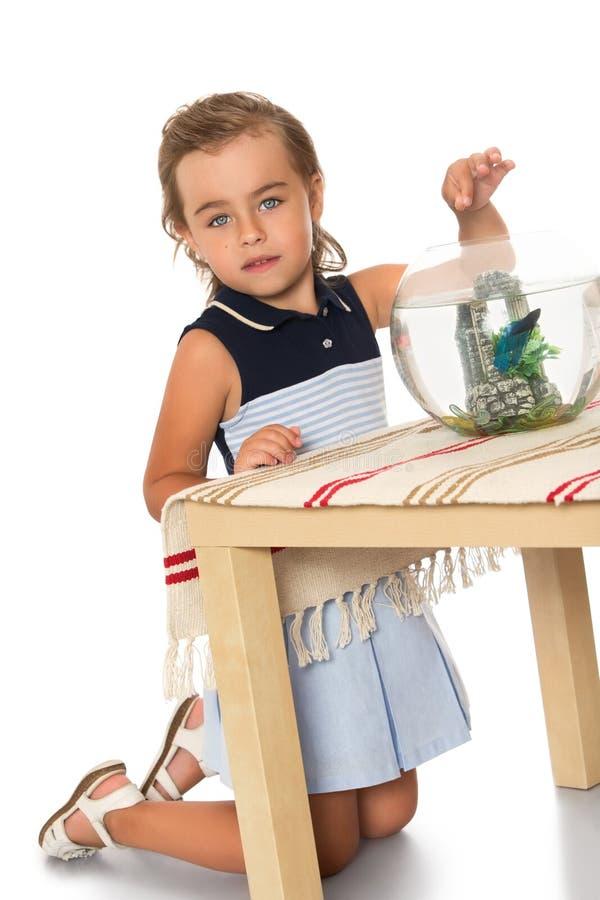 Het meisje let op vissen in een aquarium stock afbeelding