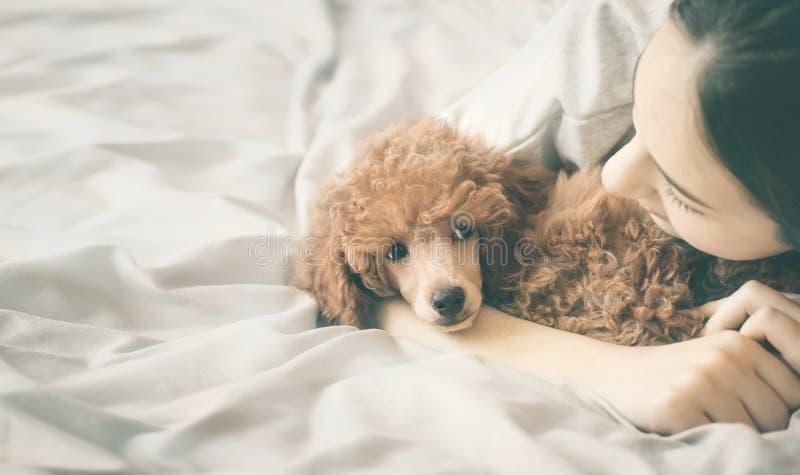 Het meisje ligt en slaapt met poedelhond in bed royalty-vrije stock afbeelding