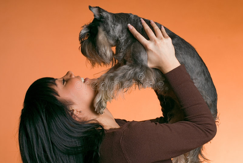 Het meisje met een hond stock foto's