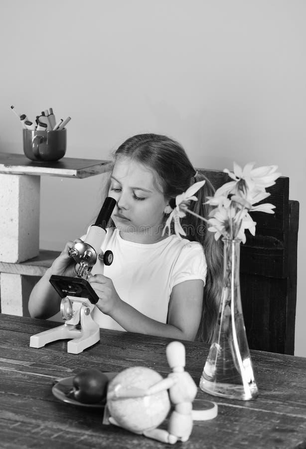 Het meisje met ernstig gezicht onderzoekt microscoop Terug naar school en schoonheidsconcept Jong geitje en laboratoriumlevering royalty-vrije stock afbeeldingen