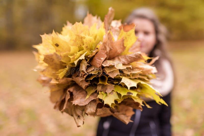 Het meisje met Onscherp Gezicht houdt Autumn Leaves Onscherpe achtergrond stock afbeelding