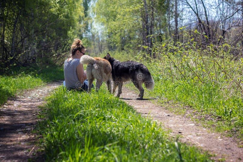 Het meisje is met twee honden royalty-vrije stock fotografie