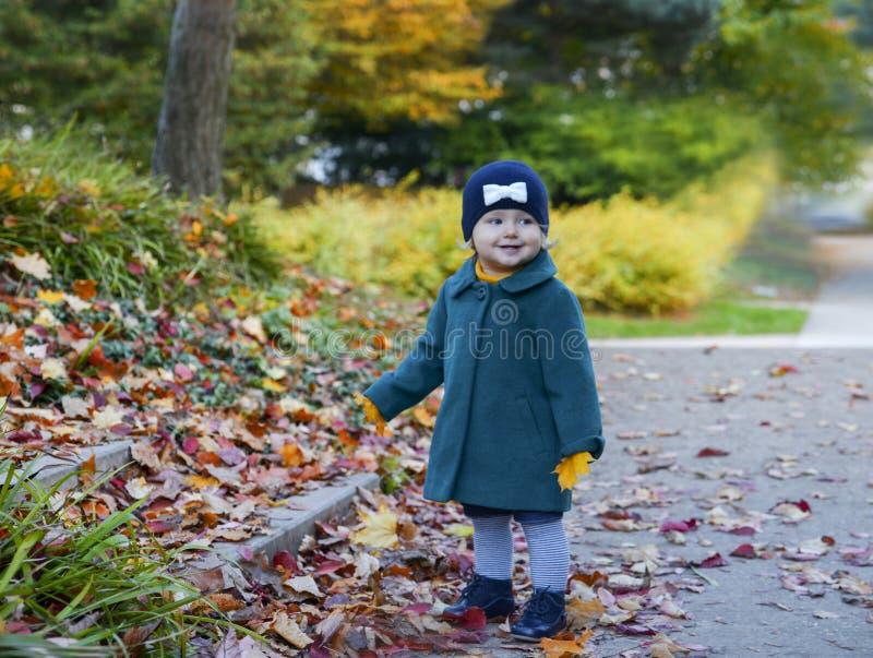 Het meisje in het park in de herfst houdt de bladeren in haar handen stock foto's