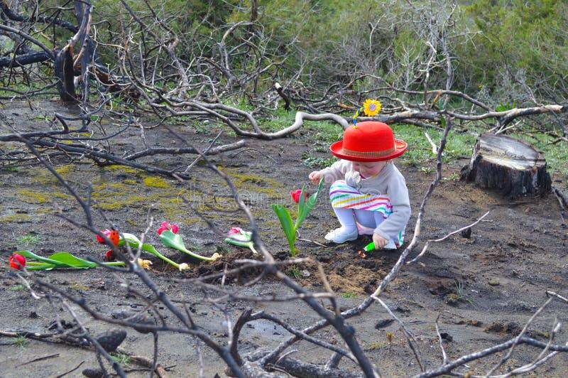Het meisje plant tulpen over gebrande grond royalty-vrije stock afbeelding