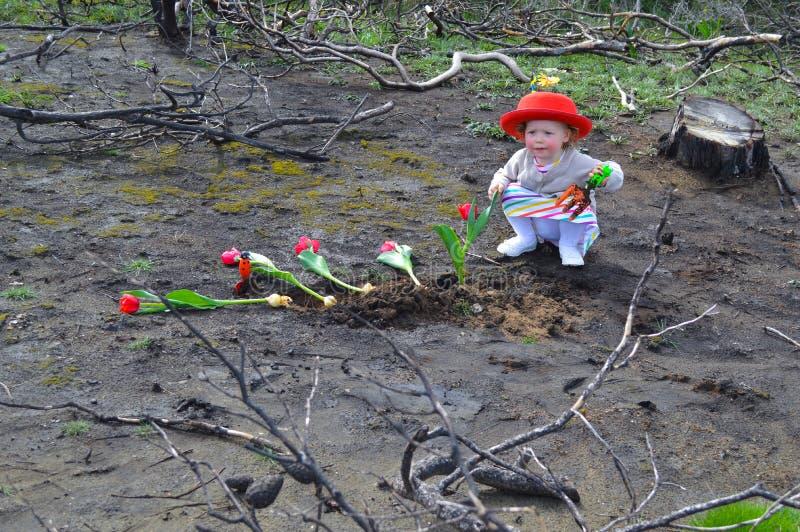 Het meisje plant tulpen over gebrande grond royalty-vrije stock fotografie