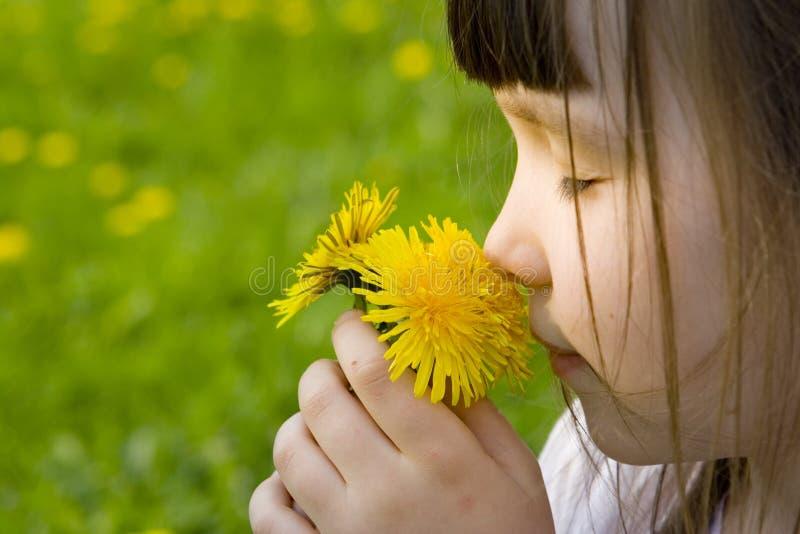 Het meisje ruikt bloemen stock afbeelding