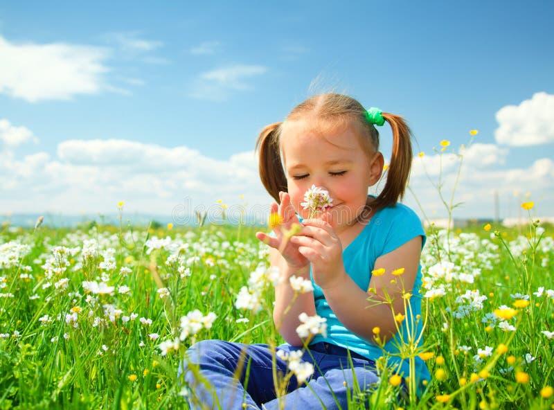 Het meisje ruikt bloemen op groene weide royalty-vrije stock foto's