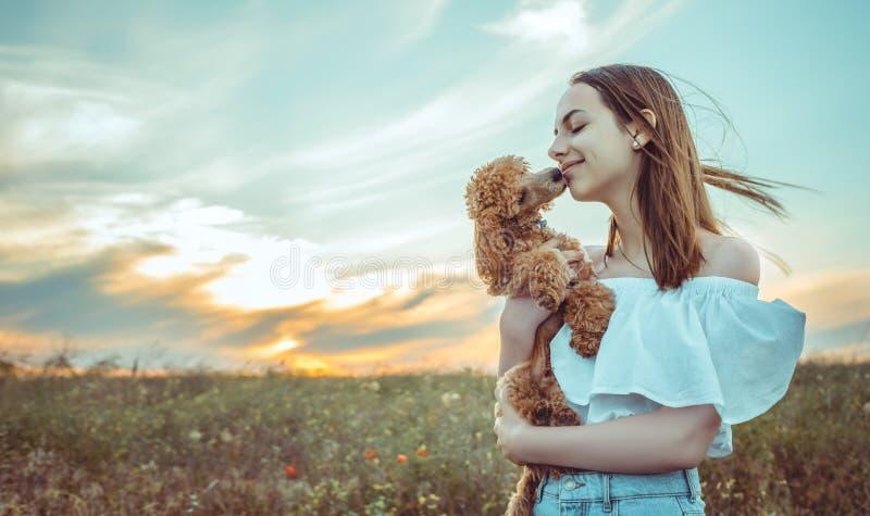 Het meisje rust met een hond op een gebied royalty-vrije stock fotografie