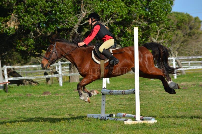 Het meisje toont het springen met poney stock foto's