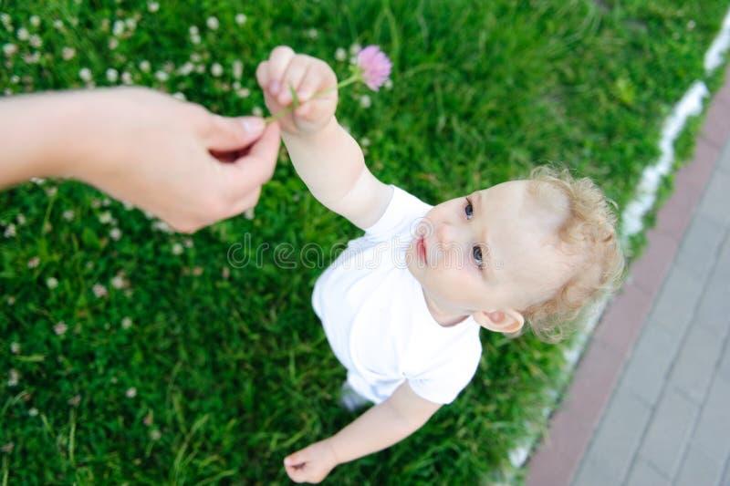 Het meisje van de baby met bloem stock fotografie