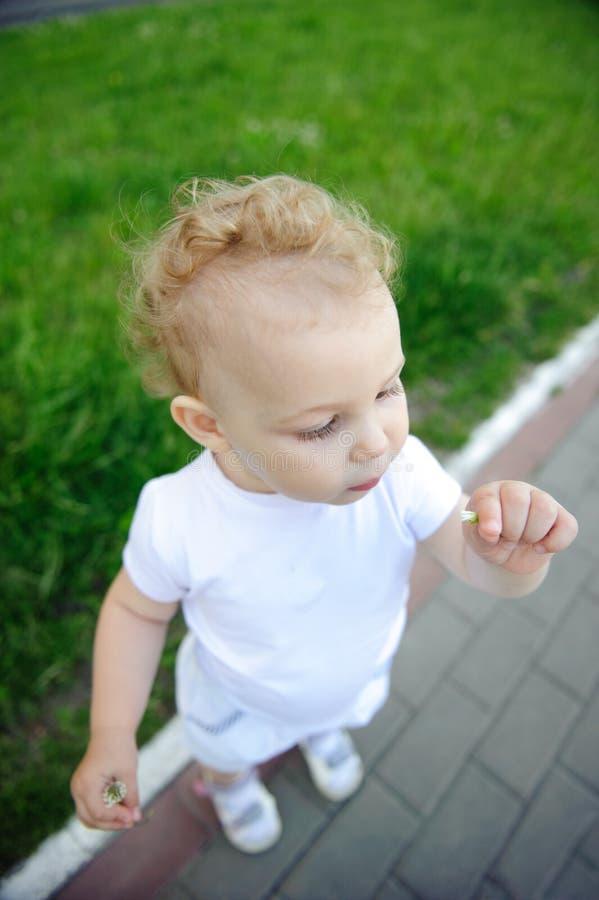 Het meisje van de baby met bloem royalty-vrije stock fotografie