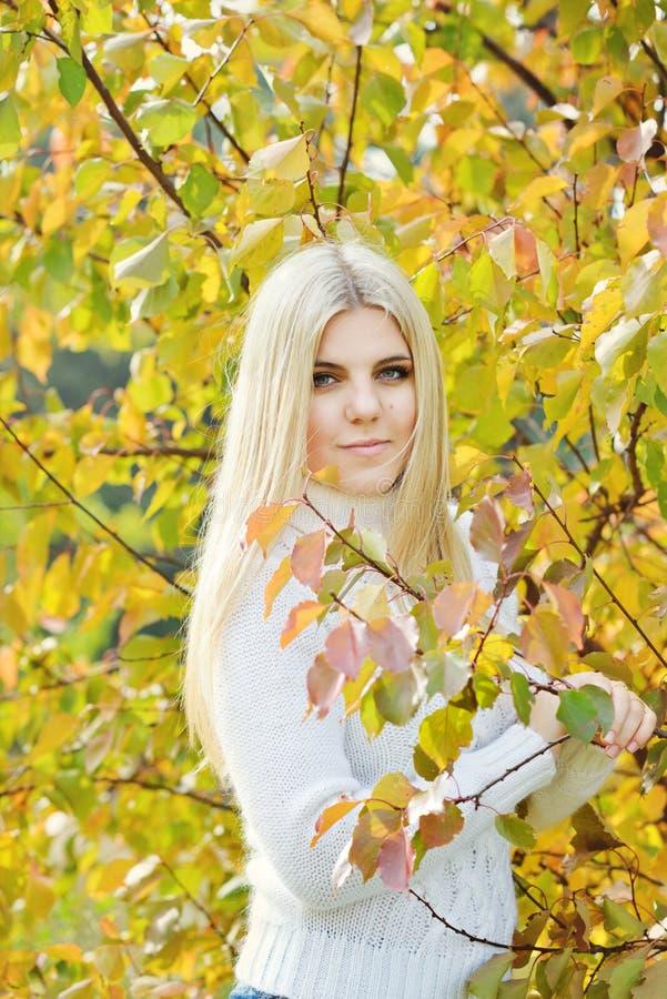 Het meisje van de blondetiener royalty-vrije stock fotografie
