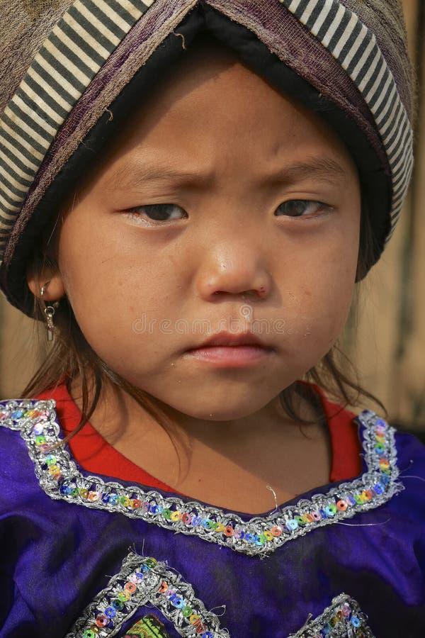 Het meisje van de heuvelstam stock fotografie