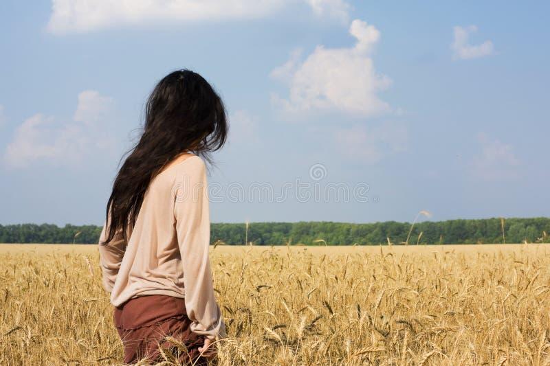 Het meisje van de hippie in de achtermening van het tarwegebied royalty-vrije stock afbeelding