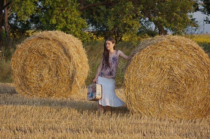 Download Het meisje van de hooimijt stock afbeelding. Afbeelding bestaande uit farming - 21697861