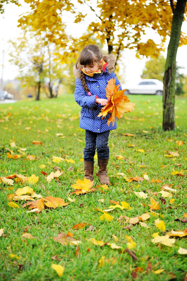 Het meisje van de peuter in blauwe laag die bladeren opneemt royalty-vrije stock foto