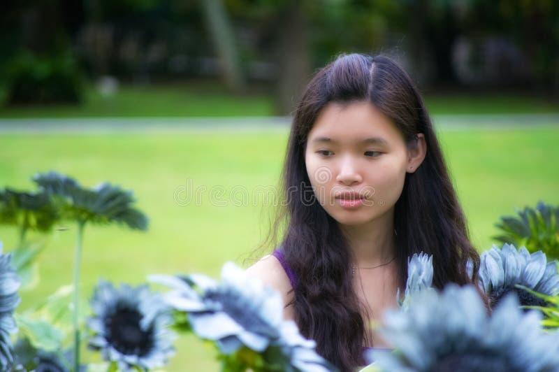 Het Meisje van de zonnebloem stock fotografie