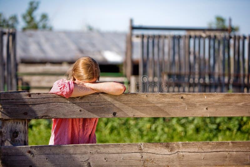 Het Meisje van het landbouwbedrijf stock afbeeldingen