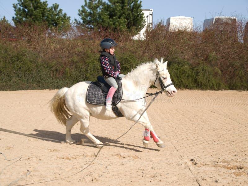 Het meisje van het paardrijden royalty-vrije stock afbeelding