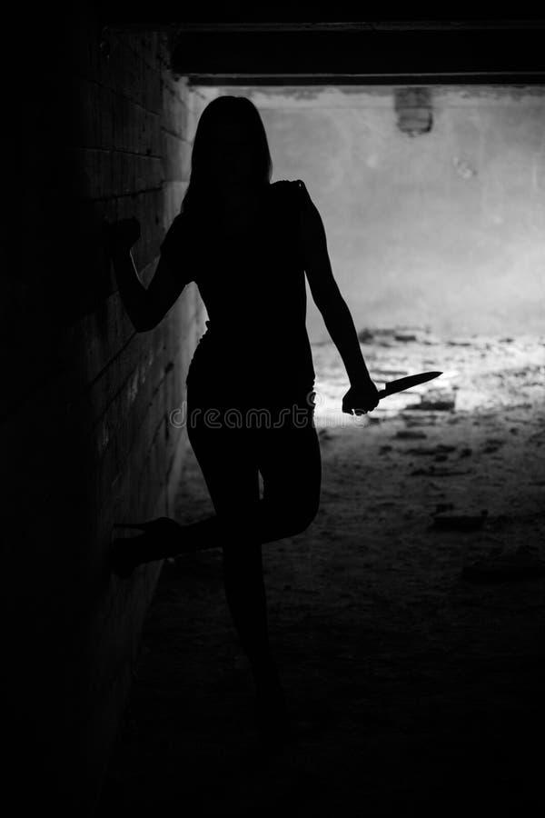 Het meisje van het silhouet stock fotografie