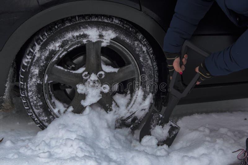Het meisje verwijdert sneeuw uit het achterwiel van haar auto, royalty-vrije stock foto