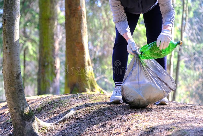 Het meisje verzamelt huisvuil Zet het in de vuilniszak Het probleem van milieuvervuiling Ecologische verontreiniging Probleem van royalty-vrije stock foto