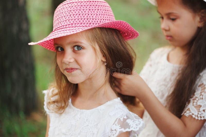 Het meisje vlecht de vlecht van haar vriend in park stock afbeelding