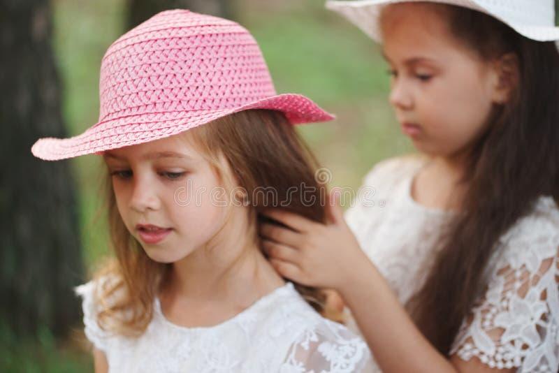 Het meisje vlecht de vlecht van haar vriend in park stock fotografie