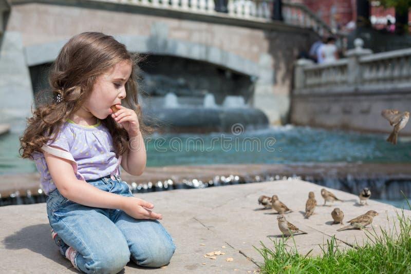 Het meisje zit dichtbij de fontein die koekjes eten en vogels voeden stock afbeelding
