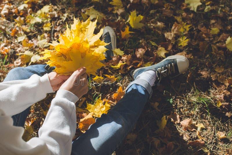 Het meisje zit in een weide in het de herfstbos op een zonnige dag en houdt een bos van gele esdoornbladeren in haar hand royalty-vrije stock afbeelding